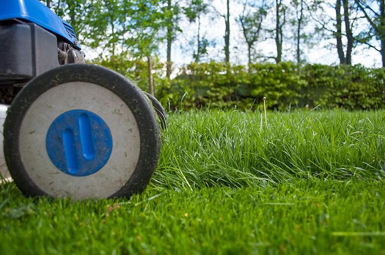 Rundum-Check von Gartenscheren und Rasenmähern